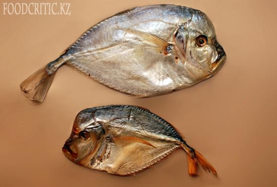 Крымская рыба
