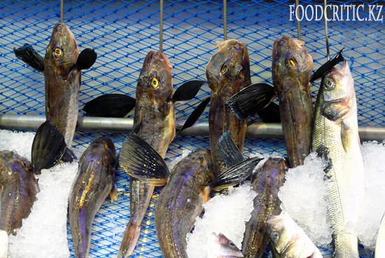 Рыба на Foodcritic.kz